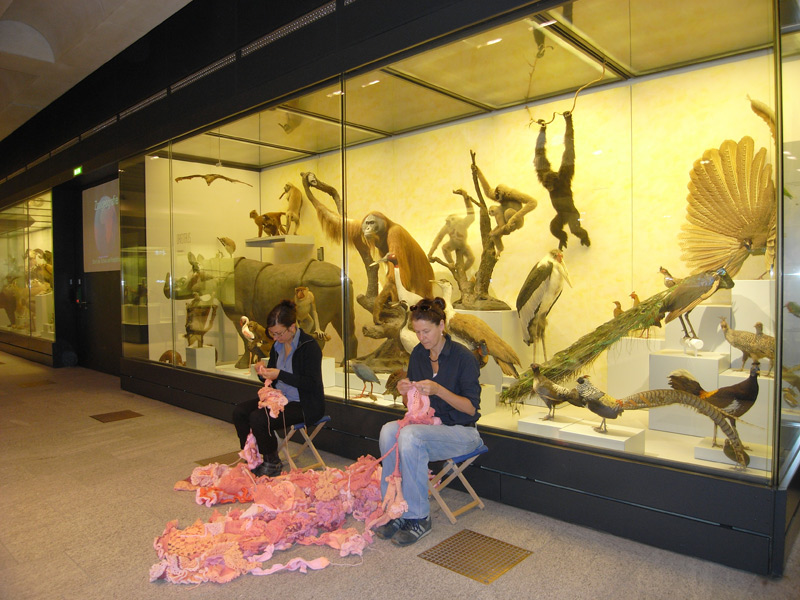 091024_Zoologisches_Museum_b